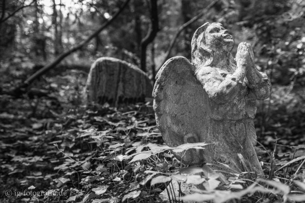 Selbstmörder Friedhof Grunewald Forst