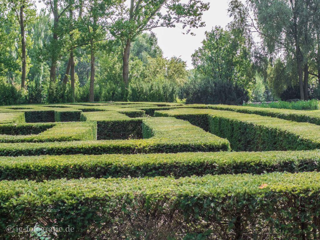 Irrgarten Labyrinth Gaerten-der-Welt-Marzahn-Berlin-2