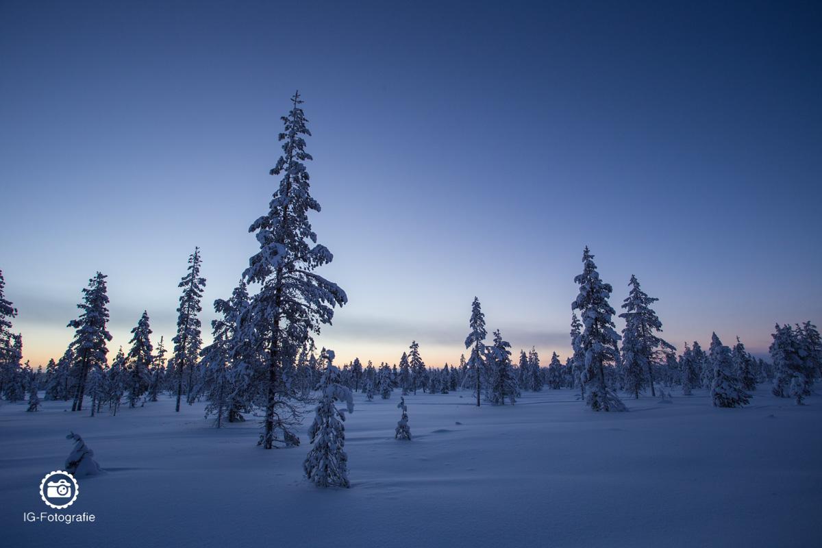 schweden-lappland-polarlicht-reise-43