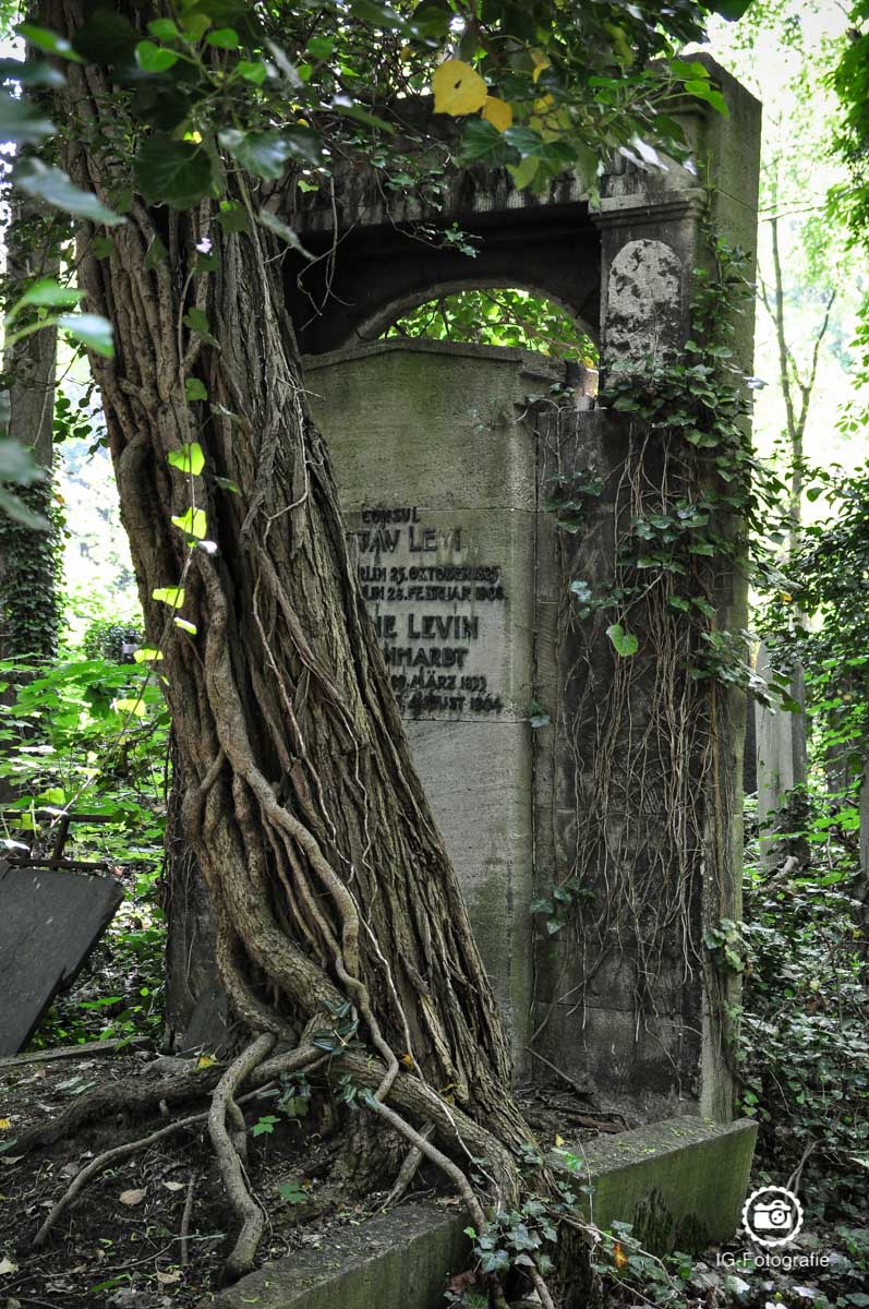 juedischer-friedhof-weissensee-fotolocation-berlin-7